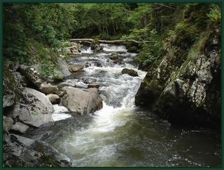 Ruisseau à Oradour