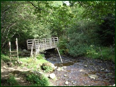 Passerelle sur le ruisseau