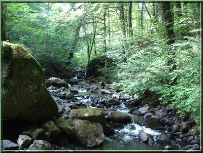 Ruisseau Le Siniq