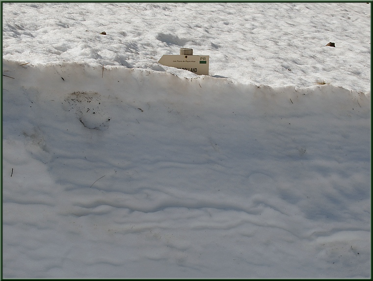 Signalétique du circuit sous la neige