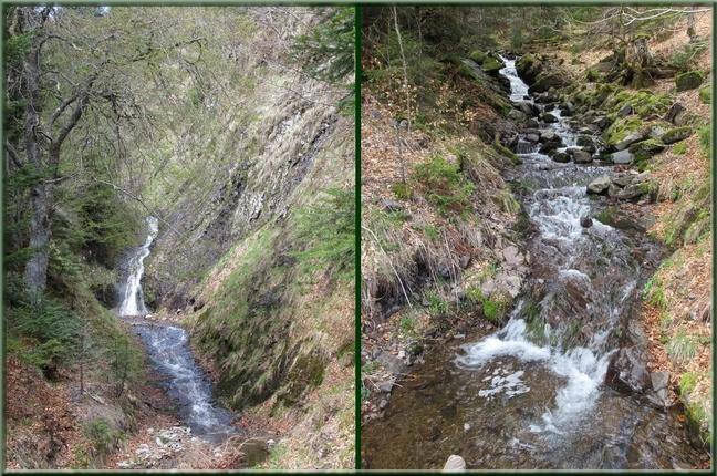 Ruisseaux à Font d'Alagnon