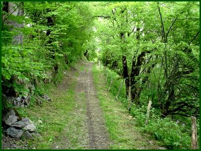 Chemin vers Laveissière