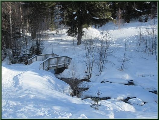 ruisseau et neige